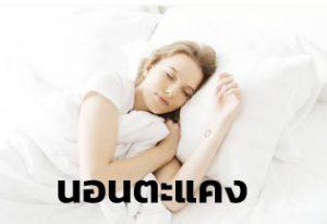 หมอนขนเป็ดเทียม นอนตะแคง